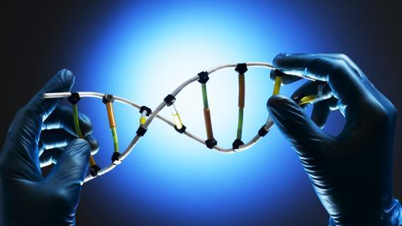 Banca DNA